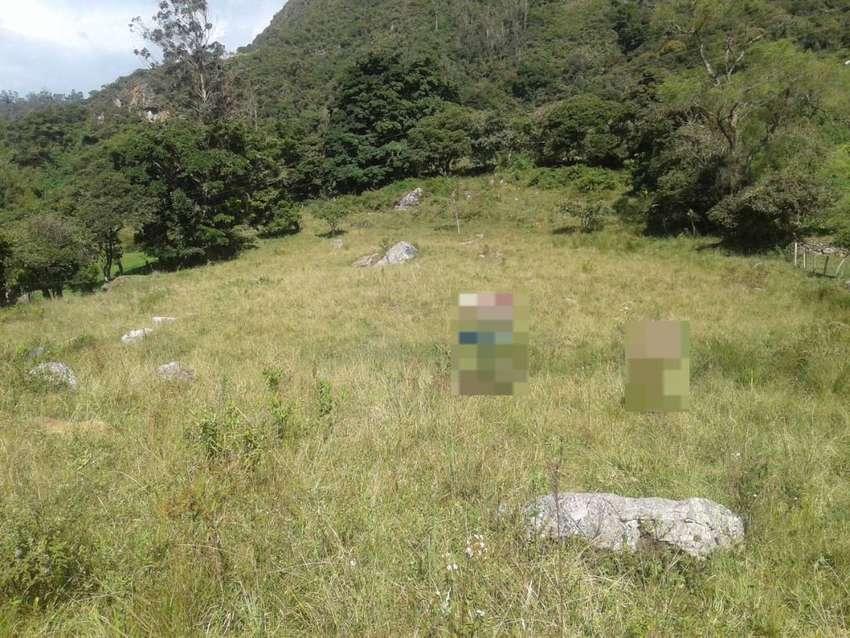 Excelente finca en el área rural de Choachí Cundinamarca, municipio tranquilo y seguro, ubicada a 20 minutos del casco u