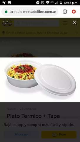 Platos térmicos para comidas calientes calientes