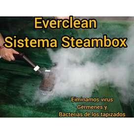 Everclean Limpieza y desinfección de Colchones y tapizados a vapor.