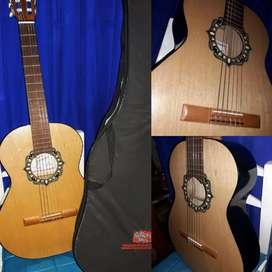 Guitarra Fonseca modelo 25