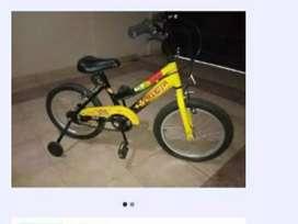 Bici rod16