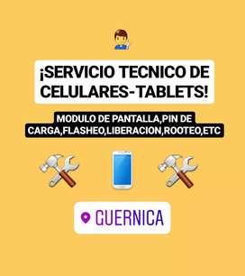 REPARACION DE CELULARES.  (MODULO,FLASHEO,PIN DE CARGA,LIBERACIONES,ETC)