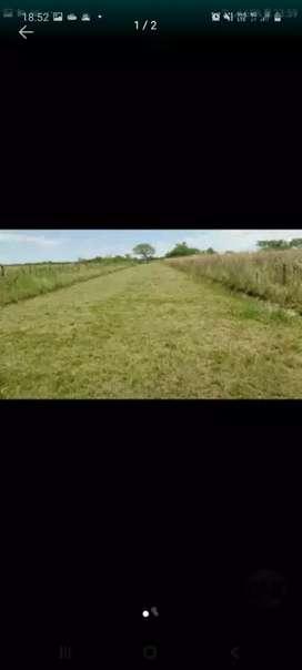 Vendo hectarea a 300m R 12