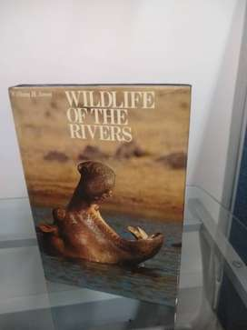 Wildlife of the rivers