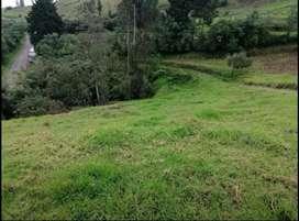 Terreno en Puellaro