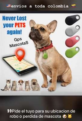 Gps para tu mascota