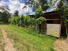 Terreno con Casa 495.39 m2 en San Pedro de Cumbaza