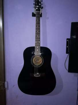 Guitarra acustica PEAVEY
