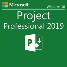 Project 2019 Venta entrega inmediata y soporte técnico del producto