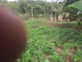 Terreno de 2.75 hectáreas casi 3