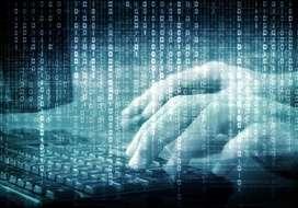 Programacion, matlab, GAMS, Octave, Python, c, java , fortran