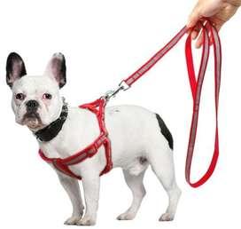 Collar Arnés Perro