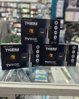 TV box TIGERS
