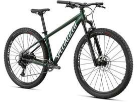 Bicicleta Rockhopper Expert