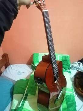 Guitarra marca clevan