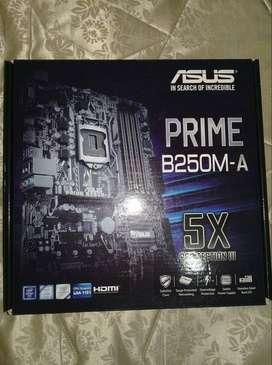 Placa madre ASUS Prime B250M-A