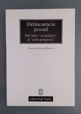 Osvaldo Agustín Marcón - Delincuencia juvenil: del niño en peligro al niño peligroso.