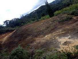 Lote, Terreno San Vicente Antioquia