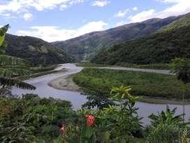Terrenos Agrícolas para producir café y cacao