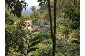 Venta Finca Cafetera, Nilo Cundinamarca