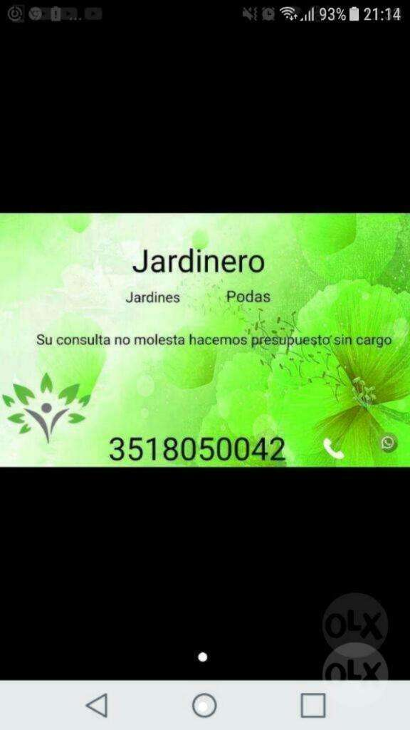 Jasrdineria General , Podas Y Limpieza 0
