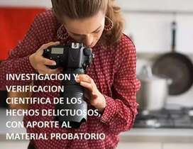 Detectives, Investigadores privados