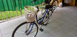 Bicicleta musetta