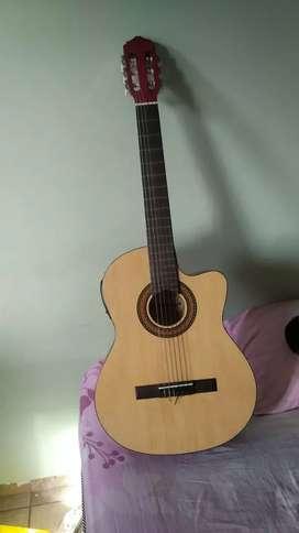 Guitarra acústica Freeman