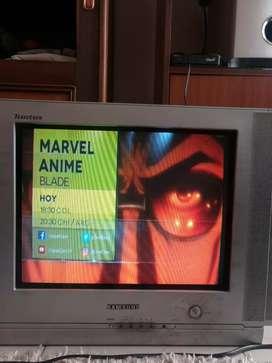 Televisor sansumg de 14 pulgadas DVD parker y equipo amplificador como teatro