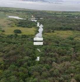 Venta de Terreno en San VIcente  a $50 por mt2