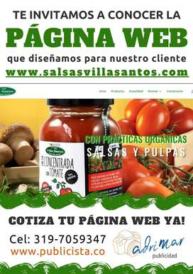 Diseño de Páginas Web, Tienda Virtual, Redes Sociales y Blogs.