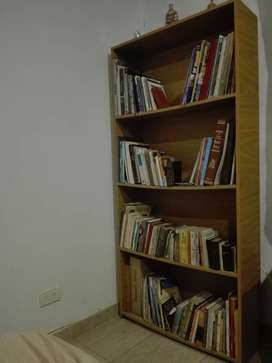Biblioteca 4 estantes