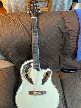 Venta de guitarra electroacustica marca gypsy