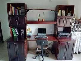 Biblioteca escritorio