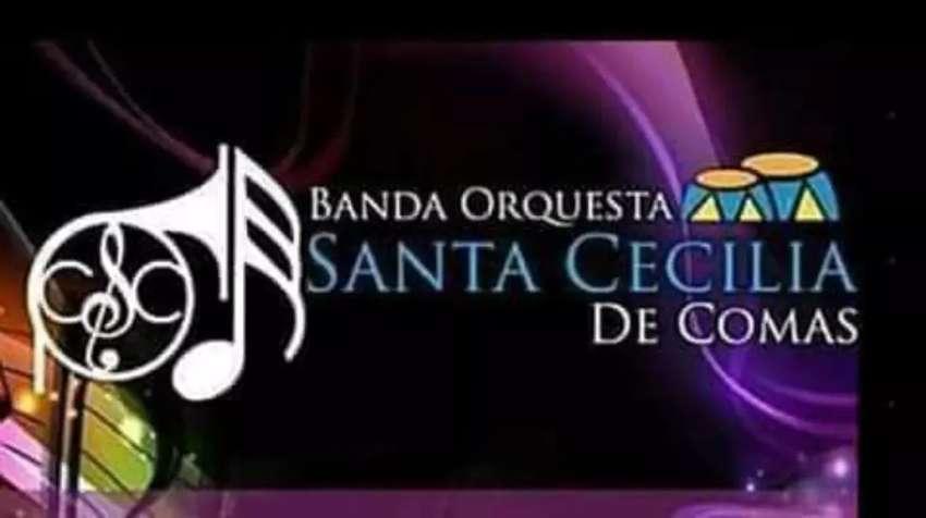 Banda orquesta santa cecilia de comas