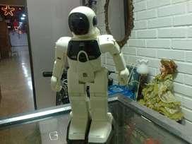 ROBOT INTELIGENTE PROGRAMABLE