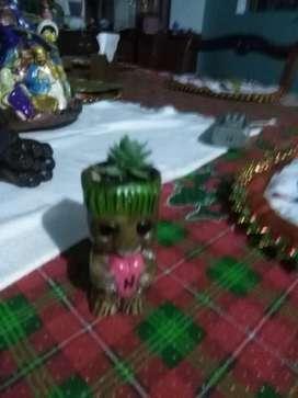 Matera Groot pequeña $10.000