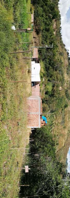 LOTES EN PROYECTO BRISAS DEL CAMPO VEREDA EL PALMAR VIA A MATANZA