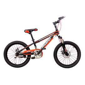 Bicicleta Niño Niña Rin 20 Pulgadas Phoenix Fnix
