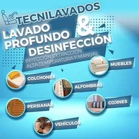 Lavado y desinfección de Muebles y colchones