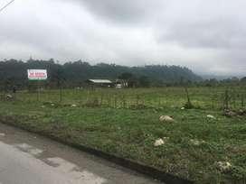 Se renta 2 hectáreas de terreno en Santo Domingo