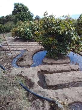 Terreno en Tanda-Tocachi