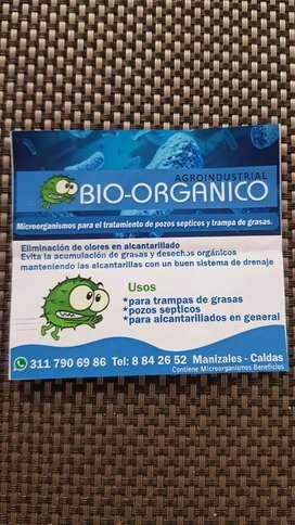 Bacterias beneficas con el ambiente.