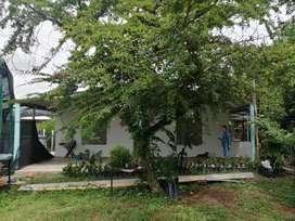 Alquiler Finca Vacacional Guamo Tolima a 1 hora de Melgar