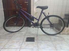 Bicicleta Raggio rodado 26