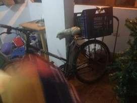 Bicicleta sencilla