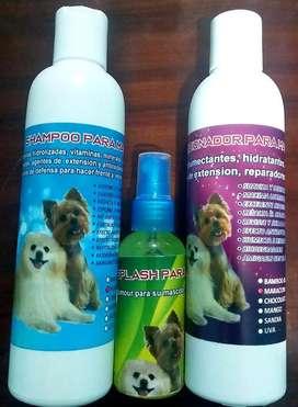Shampoo, Acondicionador Y Perfume