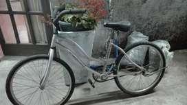 Bicicleta rorado 22
