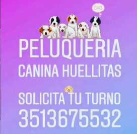 PELUQUERIA CANINA HUELLITAS