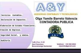 CONTADOR PUBLICO, DECLARACIONES DE RENTA
